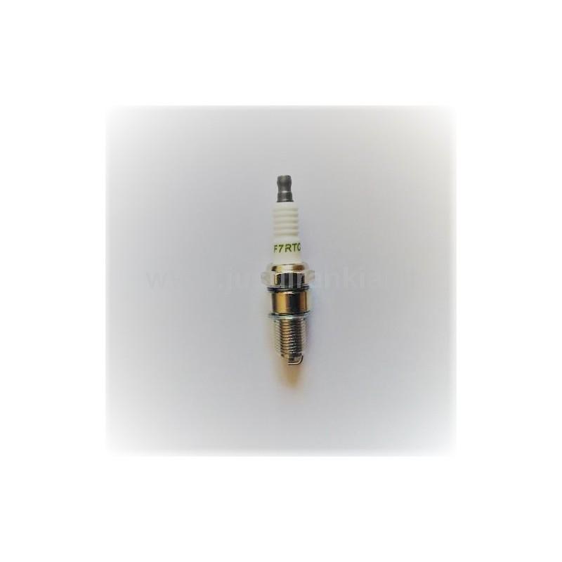 746001076 (F7RTC) uždegimo žvakė