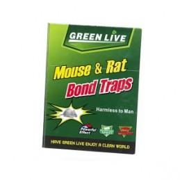 Spąstai pelėms lipnūs popieriniai 16,5x21,5cm. YM1305