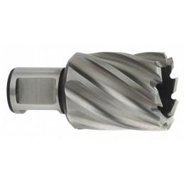 HSS gręžimo karūna metalui 12x30 mm Weldon 19 mm, Metabo